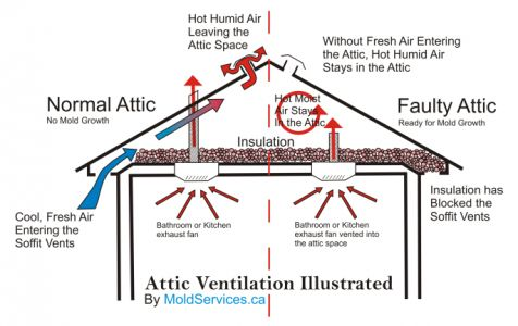 Common Problems Of Poor Roof Ventilation