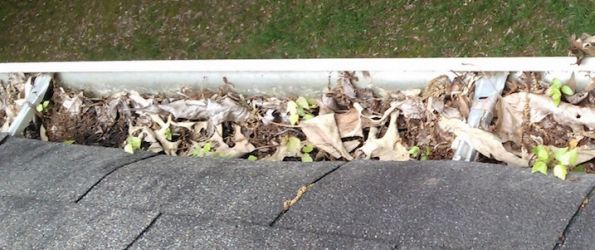 Why Should I Clean My Gutters? | Sunset Ridge Exteriors | Madison