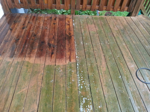 mold and mildew deck